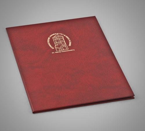 Okładka na dyplom Kruszwica